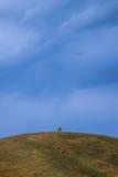 Albero solo sopra una montagna Fotografia Stock