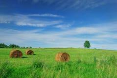 Albero solo sul campo con le balle di fieno Immagini Stock Libere da Diritti
