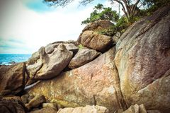 Albero solo sulla montagna superiore nei precedenti del cielo Fotografia Stock Libera da Diritti