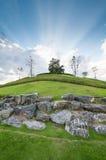 Albero sulla collina con l'indicatore luminoso nuvoloso del cielo blu del raggio di sole Fotografia Stock