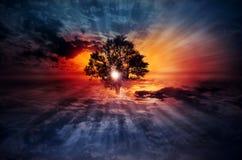 Albero surreale magico su Cloudscape Fotografie Stock Libere da Diritti