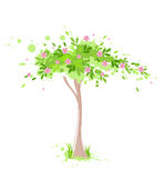Albero verde della sorgente illustrazione di stock