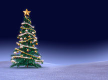 albero verde di cristmas Fotografie Stock Libere da Diritti
