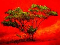 Albero verde e suolo rosso Kauai Fotografie Stock