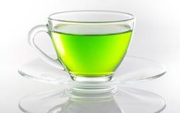 Albero verde giapponese Fotografia Stock