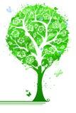 Albero verde intenso in fioritura Fotografia Stock