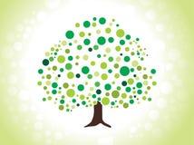 Albero verde punteggiato estratto Fotografia Stock