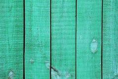 albero verde strutturato Fotografie Stock