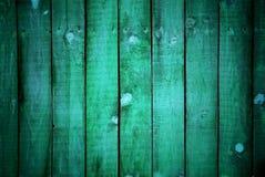 albero verde strutturato Immagine Stock