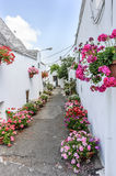 Alberobello street with colorful flowers. A lovely Alberobello street with trullo house and colorful flowers and roses Royalty Free Stock Images