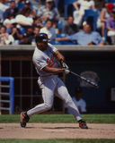 Albert Belle Baltimore Orioles Royalty Free Stock Photos