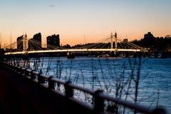 Albert bridge evening. Looking down the Thames at Albert Bridge Royalty Free Stock Photos