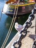 The Albert Dock in Liverpool Merseyside England Royalty Free Stock Image