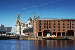 albert dock liverpool uk Royaltyfria Foton