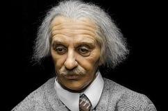 Albert Einstein obrazy royalty free