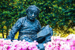 Albert Einstein Memorial, EUA foto de stock royalty free