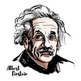 Albert Einstein portret royalty ilustracja
