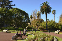 Albert park Auckland - New Zealand Stock Photos
