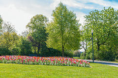 Albert Park with Tulips Stock Image