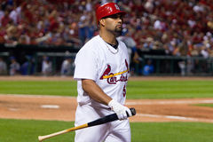 Albert Pujols Stock Images