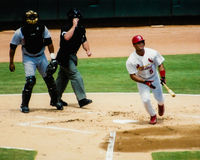 Albert Pujols St Louis Cardinals Images stock