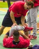 Albert Pujols St Louis Cardinals Royaltyfria Bilder