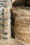 alberta тюкует временя прерии ландшафта сена полей сельское Стоковые Изображения
