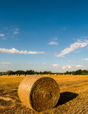 alberta тюкует временя прерии ландшафта сена полей сельское Стоковые Фотографии RF