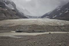 alberta athabasca Canada kanadyjski Columbia sławny lodowa icefield jaspis najwięcej park narodowy Rockies brać Zdjęcie Stock