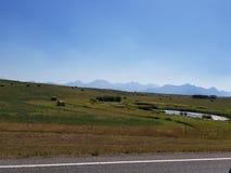 Alberta backroads. Driving through alberta near Watertown national park Stock Photo