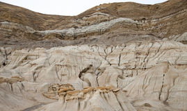alberta badlands Royaltyfria Bilder