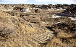 alberta badlands Royaltyfri Foto
