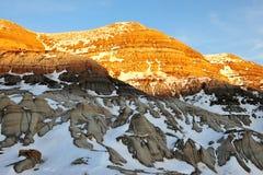 Alberta badlands field Stock Photography