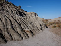 Alberta Badlands And Geological Formations Royaltyfri Bild