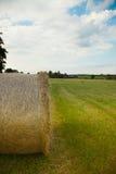 alberta baler fields lantlig sommartid för höliggandeprärie Royaltyfria Bilder