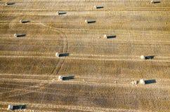 alberta baler fields lantlig sommartid för höliggandeprärie Royaltyfri Bild