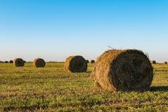 alberta baler fields lantlig sommartid för höliggandeprärie Royaltyfri Fotografi
