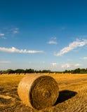 alberta baler fields lantlig sommartid för höliggandeprärie Royaltyfria Foton