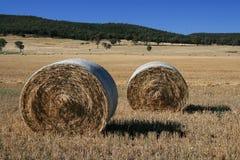 alberta baler fields lantlig sommartid för höliggandeprärie Arkivfoton