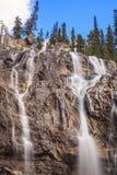 alberta Banff Canada spadek icefields jaspis lokalizować z parkway gmatwaniny Obrazy Stock