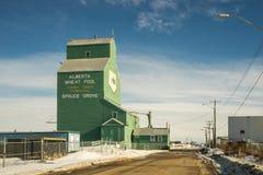 Alberta basenu winda, widok od zachodu zdjęcia royalty free