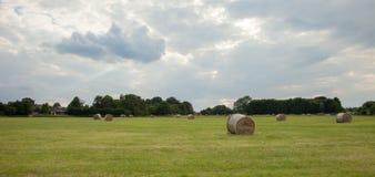 alberta beluje pola hay krajobrazu wiejskiego prerii lato Obraz Stock