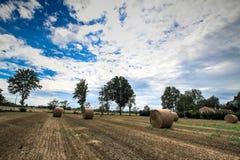 alberta beluje pola hay krajobrazu wiejskiego prerii lato Obraz Royalty Free