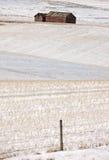 Alberta Buildings y campo en invierno fotografía de archivo libre de regalías