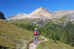 alberta Canada wycieczkowicza góry skaliste Zdjęcie Stock