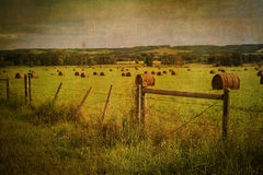 Alberta Countryside Stock Photo
