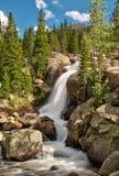 Alberta Falls i Rocky Mountain National Park Arkivbild