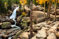 Alberta Falls. This image is of Alberta Falls in the Wild Basin Area of Rocky Mountain National Park.  This photograph was taken very early in the morning Royalty Free Stock Image