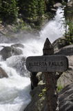 Alberta Falls Rocky Mountain National Park Arkivfoto