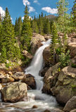 Alberta Falls in Rocky Mountain National Park. Water cascades down the gorge at Alberta Falls, located in the Rocky Mountain National Park, just outside Estes stock photography
